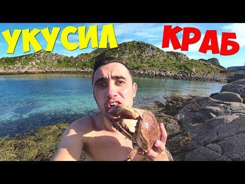 Подводная охота на гигантских крабов в Норвегии. Жареные крабы на гриле.