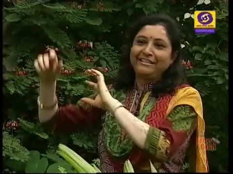 Swavalambaneya Sahajate | Progressive Farmer Vanajakshi | Sanchaya | DD Chandana