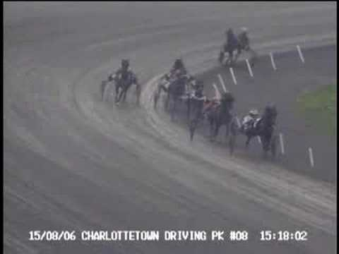 15/08/06 Charlottetown Driving Park Alantic stire stakes Maple Leaf Noble