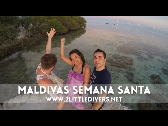 2 Little Divers |  Maldivas Semana Santa 2015