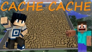 CACHE CACHE MINECRAFT MAP LABYRINTHE GEANT | [JARDIN GEANT] | PS4 FR