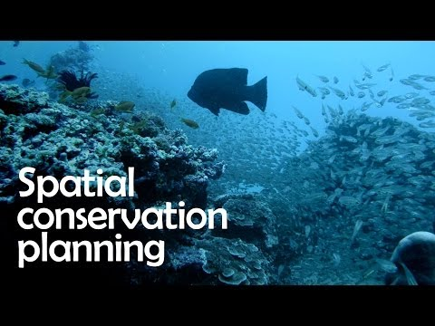Spatial Conservation Planning