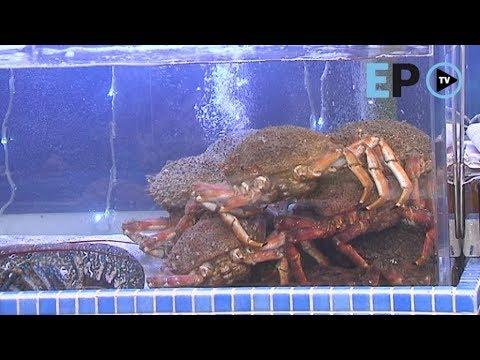 Pescado e marisco, o máis demandado en Lugo polo Nadal