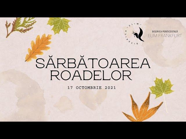 🔴 LIVE  Elim Frankfurt // Sarbatoarea Roadelor 17.10.2021