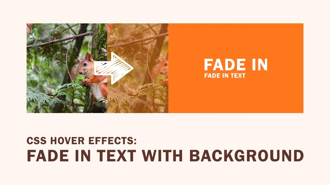 A background image hover - Css Hover Effects Fade In Text With Background