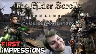 "Elder Scrolls Online Tamriel Unlimited PC First Impressions ""Is It Worth Playing?"""