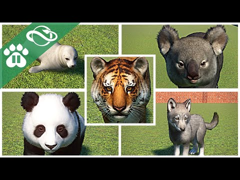 ALL 69 BABY ANIMALS! | Planet Zoo |