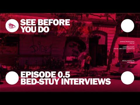 Bedford-Stuyvesant Neighborhood Gentrification Issue Interview Episode 01