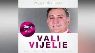 ALBUM VALI VIJELIE ( COLAJ )