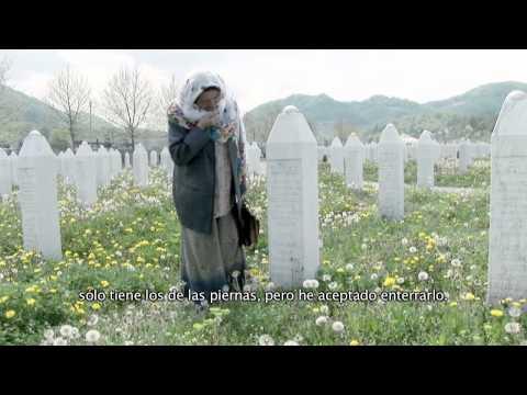 Bosnia. La paz dividida