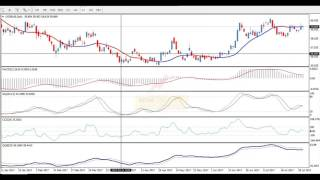 Торговые системы - Forex Indicators   Подробный разбор