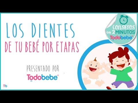TODOBEBÉ | LOS DIENTES DE TU BEBÉ POR ETAPAS