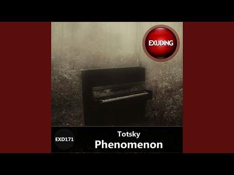Phenomenon (Original Mix)