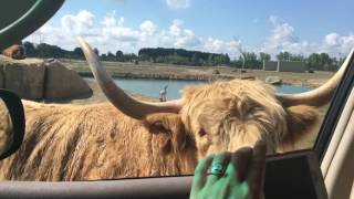 Our hilarious trip to the African Safari Wildlife Park in Port Clinton, Ohio by the Crafty Kidz