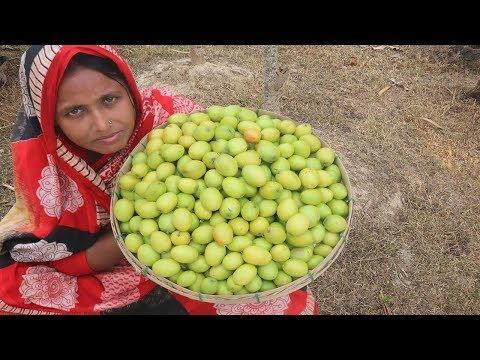Bengali Boroi Vorta Recipe Spicy Jujube Makha Farm Fresh Plum Paste Tasty Kul Makha For Orphan Kids