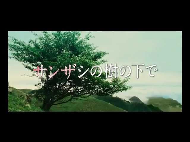 映画『サンザシの樹の下で』予告編
