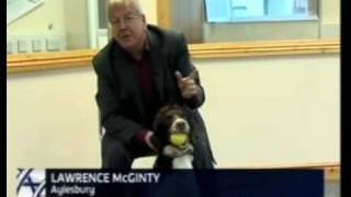 Cancer & Bio-detection Dogs  Itv