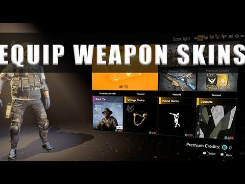 The Division 2 how to equip weapon skins
