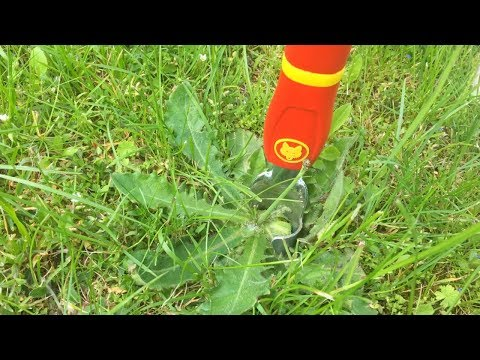 Clever And Easy German Garden Tool For Weed Removal