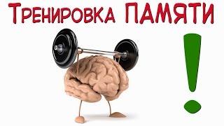 Тренировка памяти или как развить свой мозг?!