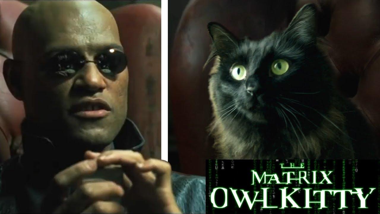 Resultado de imagen para Matrix Morpheus