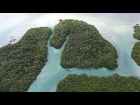 aerial-photography-definition