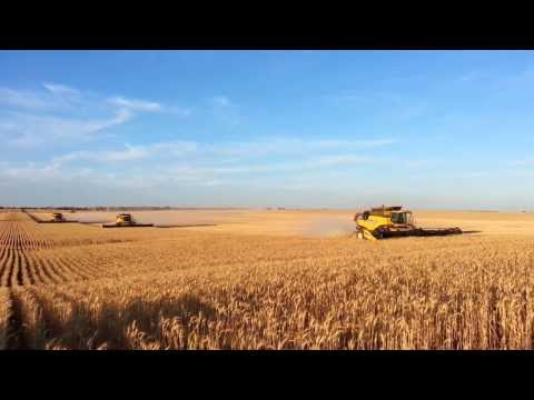 Gleeson Harvest Australia 2013. New Holland CR9090's