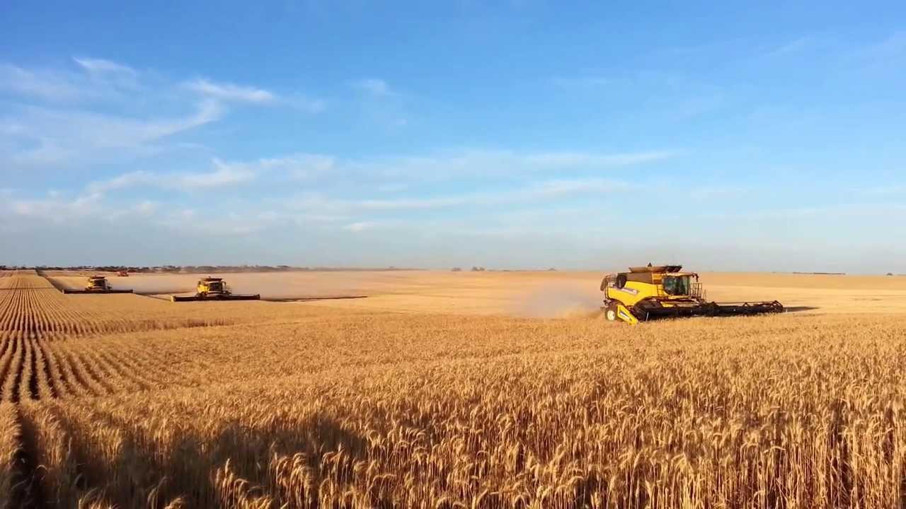 Gleeson Harvest Australia New Holland Cr S