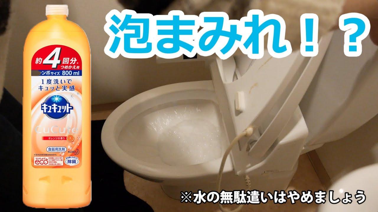 トイレ詰まり 食器用洗剤