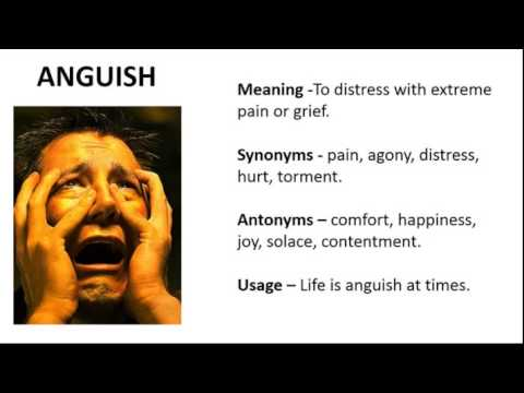 Vocabulary Made Easy Meaning of Anguish Synonyms Antonyms and its Usage  YouTube