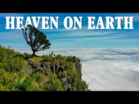 MADEIRA ISLAND - Is it really HEAVEN on Earth?