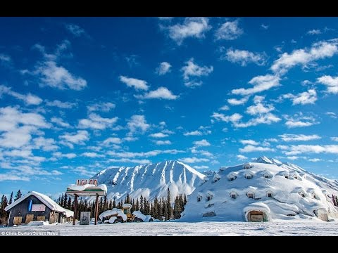 Abandoned Alaskan Hotel Igloo City Only Guests Since 1970 Have Been Wild  Bears