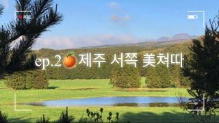 봄제주2박3일 | 제주서부 | 맛집 | 여행코스