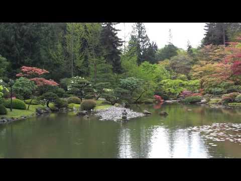 Shuttle-Wired:Seattle Japanese Garden