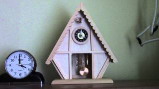 Chalet Cuckoo Clock Kit.... Completed!!!