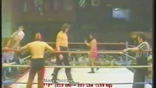 THE GIANTS OF WRESTLING, Volume 2 - The Definitive Tribute (42min.)