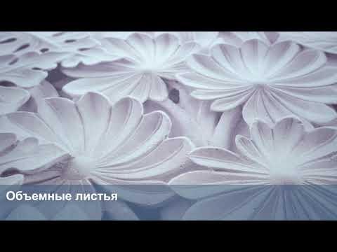 3D Фотообои «Объемные листья»