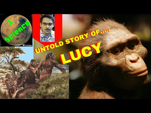 LUCY/Ape/HINDI/URDU/#6