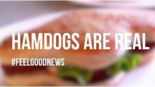 Hamdog - a Hotdog Hamburger Hybrid - Exists in Australia // #FeelGoodNews