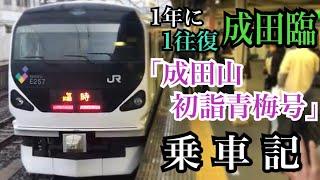 【列車乗車記】E257系 成田山初詣青梅号