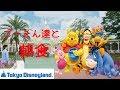 【朝食キャラグリ】クリスタルパレス・レストラン:ディズニーキャラクターブレックファスト@東京ディズニーランドCrystal Palace Restaurant