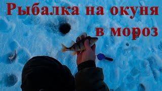 Рыбалка зимой на окуня в мороз за 20 Кировская область