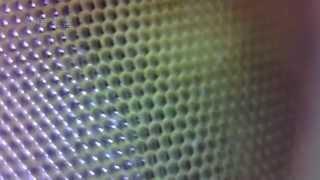 석정반 - USB 디지탈현미경으로 본 잠자리의 눈, 한…