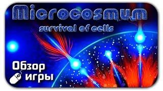 Видео обзор игры ? Microcosmum survival of cells на ПК (Игра похожая на Агарио)