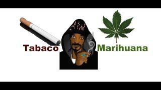 Qué es peor la Marihuana o el Tabaco?