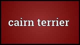 Cairn Terrier Meaning
