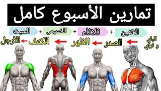 خطة تدريبية لمدة اسبوع كامل لبناء العضلات | تمارين كمال الأجسام screenshot 4