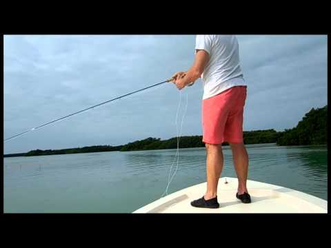 Belize   Tom Bonefishing