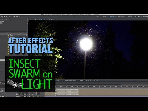 insects-flying-around-light---after-effects-tutorial