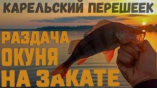 Такой рыбалки мы не ожидали Озеро карельского перешейка Ловля окуня на джиг Рыбалка на спиннинг